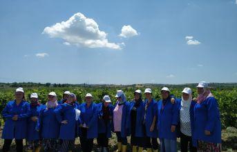 Kadın çiftçilere ne eğitimi verildi?
