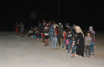 320 düzensiz göçmen yakalandı