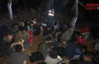 203 düzensiz göçmen yakalandı