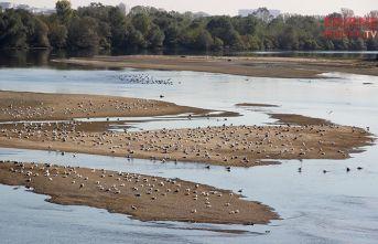 Meriç Nehri'nde kum adacıkları