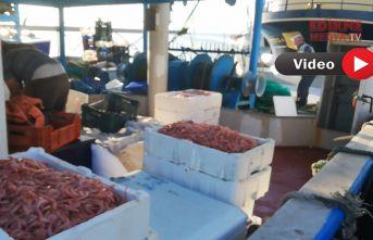 Teknelere balık satış yasağı