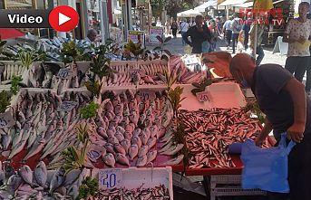 Balık fiyatları yakıyor