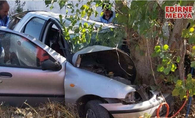 Ağaca çarpan sürücü yaralandı