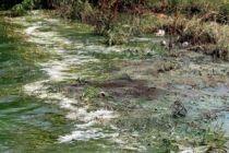 Atık sular nereye  bırakıldı?