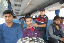 36 düzensiz göçmen yakalandı