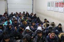 333 mülteci daha yakalandı
