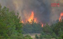 Yarımada yanıyor
