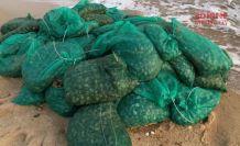 1 ton midye yakalandı