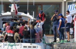 147 düzensiz göçmen yakalandı