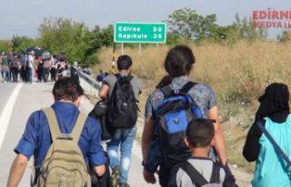 Bir haftada 772 mülteci