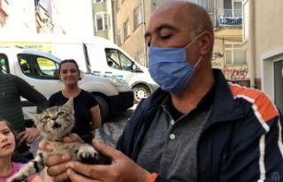 Kedi sıkıştı, vatandaş seferber oldu