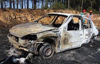 Hem otomobil, hem orman yandı