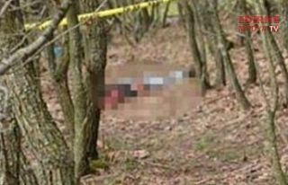 Ormanda 2 ceset bulundu