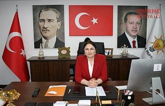 Eroğlu'nun sözlerine gelen tepkilere cevap İl Başkanından geldi