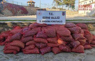 3 ton Kum Midyesi yakalandı