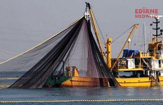 Hamsi avı yasaklandı