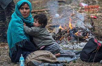 Mülteci sorununa altın madalya