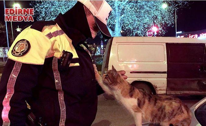 Üşüyen kedi polis ekiplerine sığındı